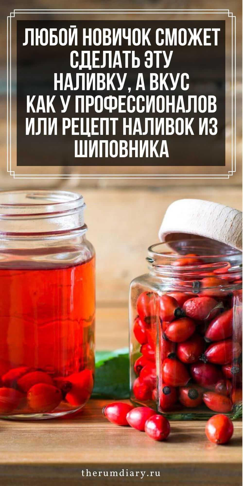 Настойка на бруснике: 6 рецептов в домашних условиях