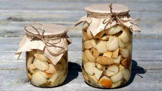 Маринованные волнушки рецепты приготовления на зиму