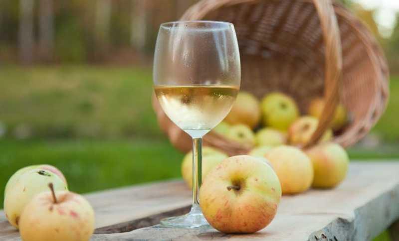 Домашнее яблочное вино пошаговый рецепт