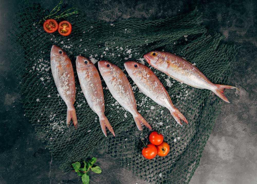Как хранить копченую рыбу: 10 эффективных способов