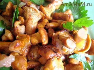 6 рецептов жаренных грибов с луком