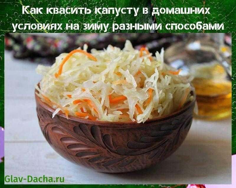 Рецепты малосольной и квашеной капусты быстрого приготовления за 1 день и 2 часа