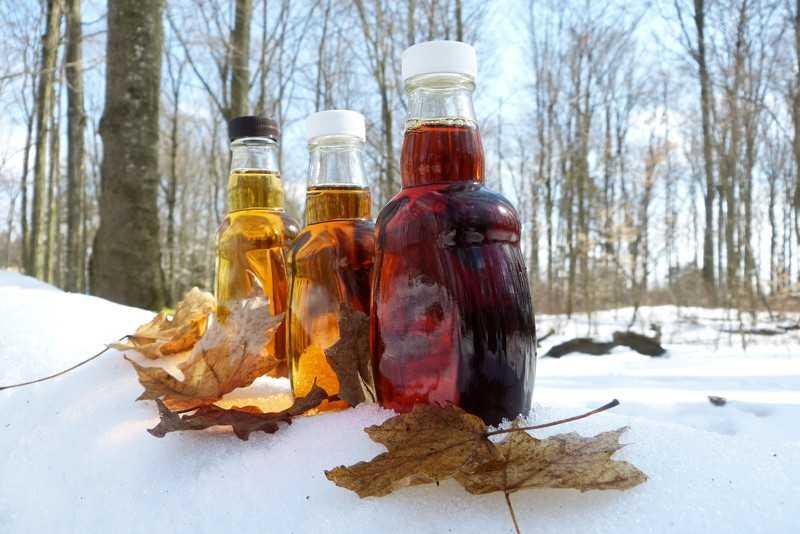 Протертая красная смородина на зиму с сахаром без варки: лучшие рецепты и пропорции для заготовки, что можно приготовить в блендере
