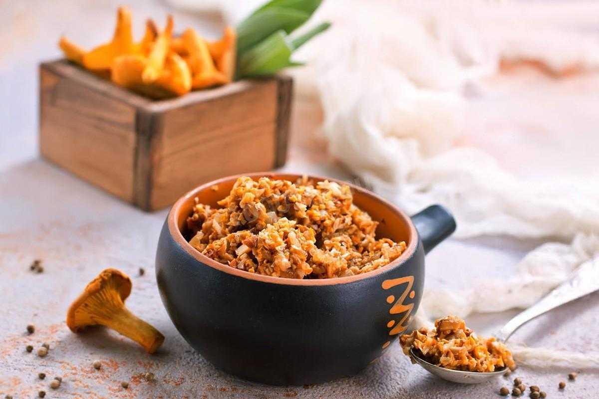 Икра из лисичек на зиму: базовые рецепты из вареных и сушеных грибов с добавлением различных овощей. Причины горечи заготовки, полезный состав и условия хранения.
