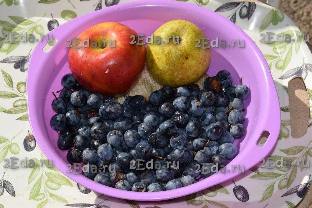 Компот из яблок сушёных: польза и вред, классический рецепт приготовления с подробным описанием