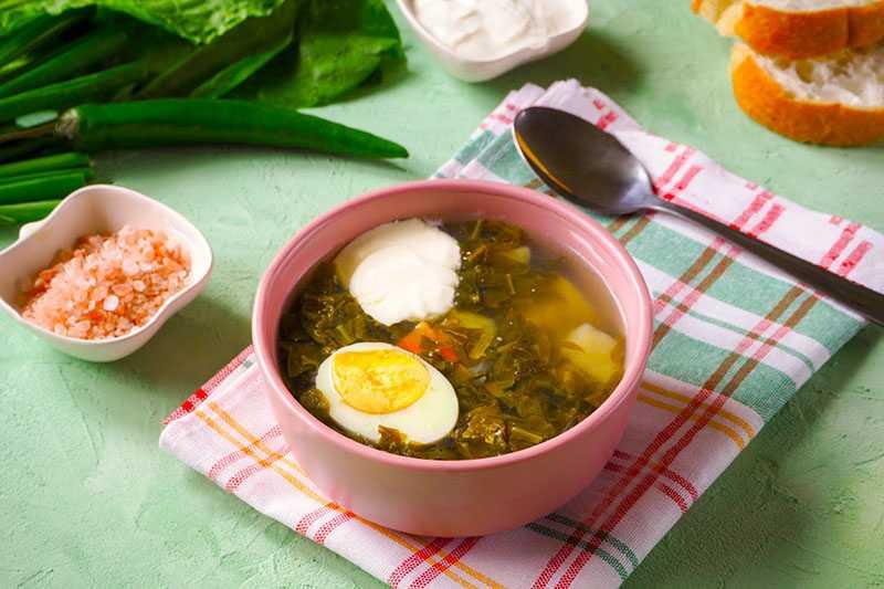 Зеленый борщ: 6 рецептов с щавелем, яйцом, с мясом, на зиму, без щавеля