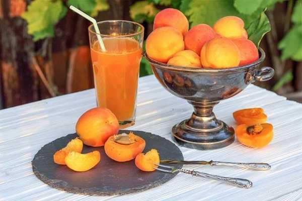 Самые удачные рецепты абрикосового сока