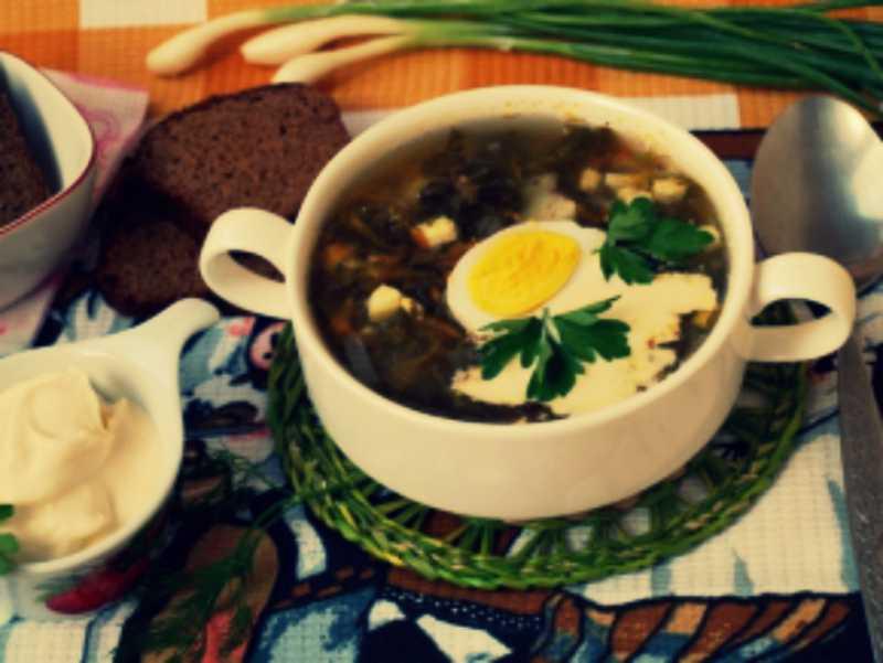 Зеленый борщ. классические рецепты зеленого борща со щавелем и яйцом