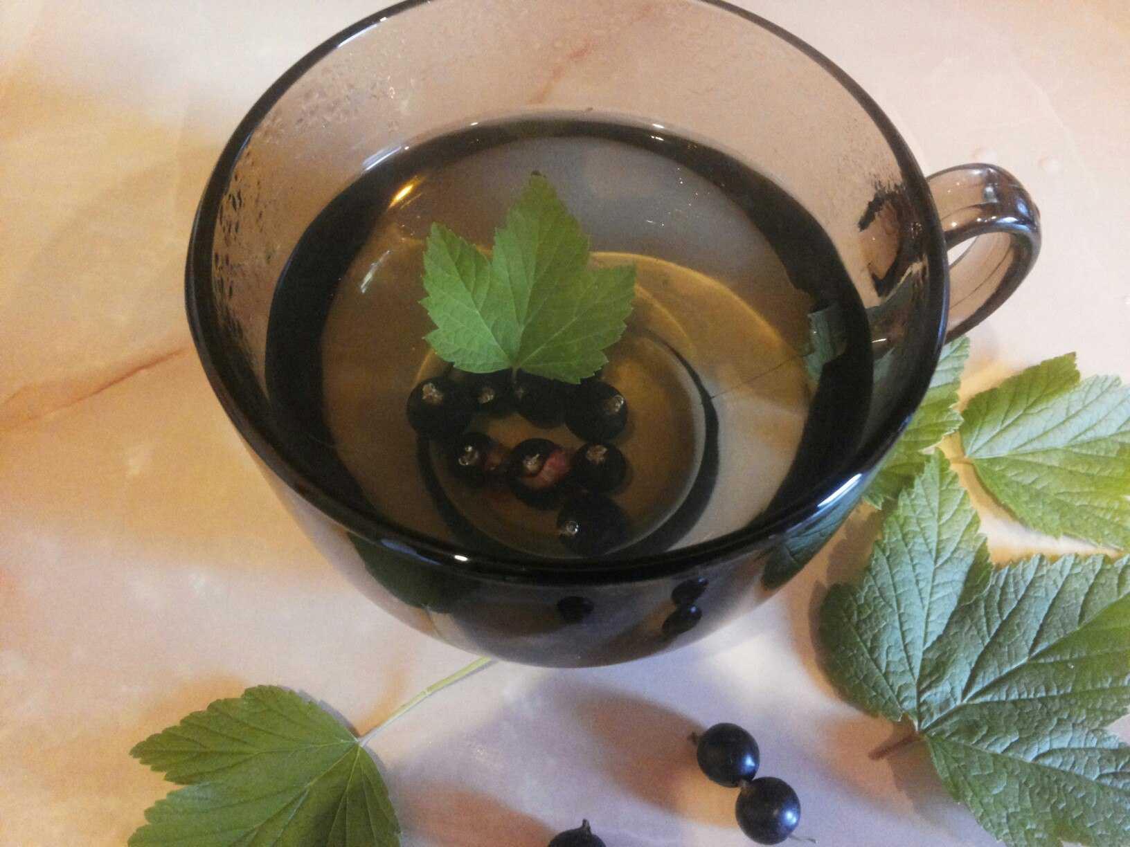 Сушка ягод смородины в домашних условиях: на воздухе, в духовке, микроволновке, сушилке. Подготовка к процессу, выбор плодов. Правила хранения сушеной продукции.