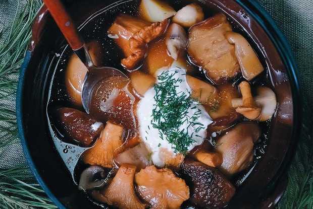 Грибная лапша из белых грибов: замороженных, сушеных, свежих