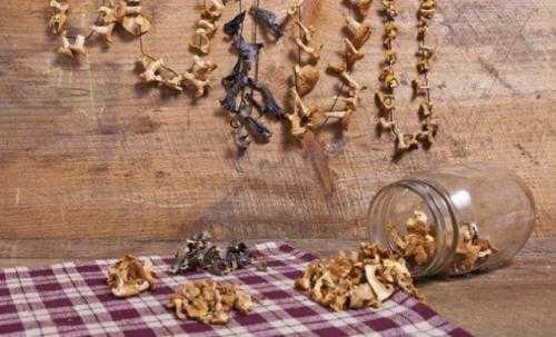 Как сушить маслята в домашних условиях – заготовка сушеных маслят на зиму