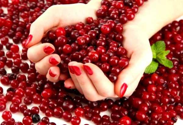 Клюква сушеная: польза, вред и калорийность | food and health