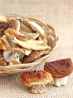 Как сушить грибы на зиму в домашних условиях в духовке