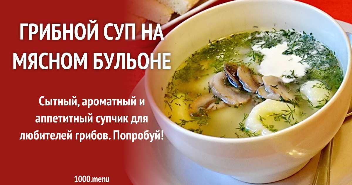 Грибной суп на курином бульоне - вкусное и питательное блюдо: рецепт с фото и видео