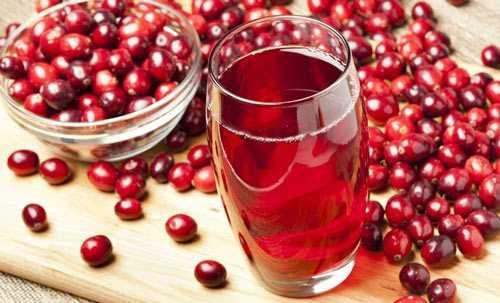 Вино из клюквы в домашних условиях секреты приготовления напитка