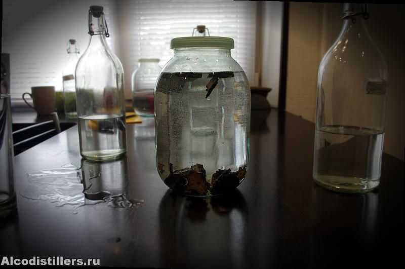 Настойка из груши в домашних условиях – аппетитный алкоголь - четыре вкуса - медиаплатформа миртесен