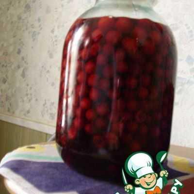 Настойка вишневая на спирту в домашних условиях