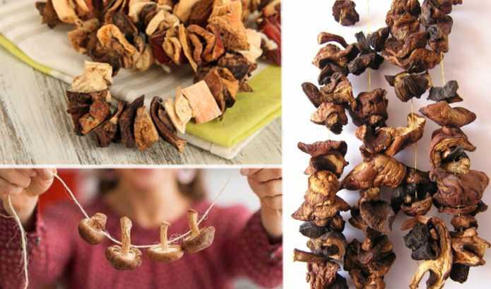 Сушеный персик: как называется, польза и вред, калорийность, как сушить, как вялить в домашних условиях