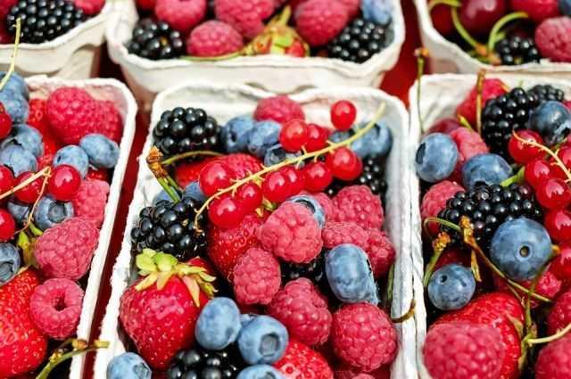 Диетические рецепты с грибами для белкового питания: блюда диеты для похудения, тушеные грибы в духовке