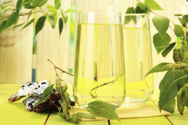 Вино из березового сока, секреты приготовления