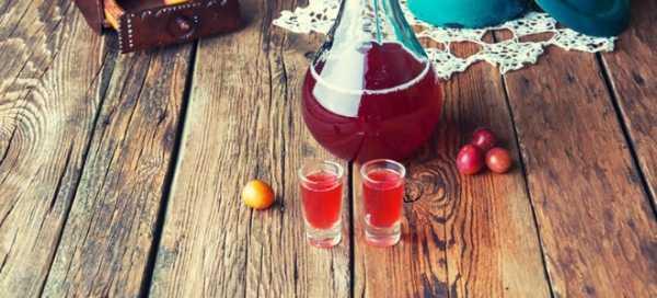 Как сделать вино из сливы в домашних условиях по простым рецептам