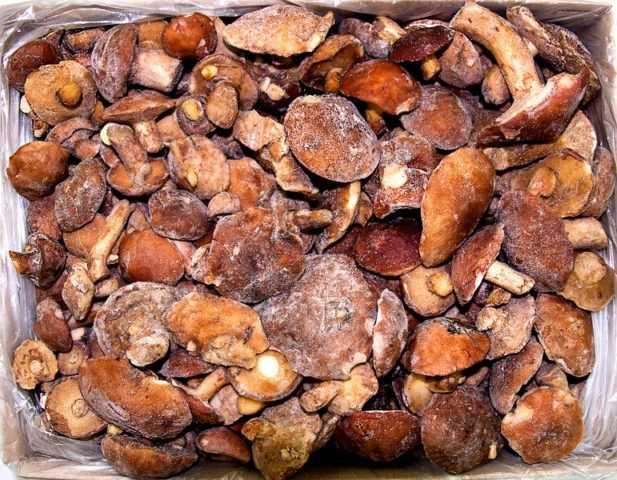 Как правильно и вкусно пожарить грибы маслята (+17 фото)?