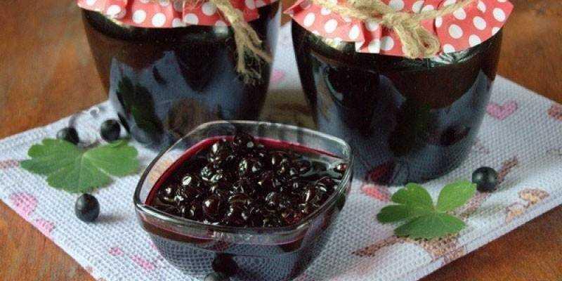 Варенье из черноплодной рябины: топ-6 замечательных рецептов