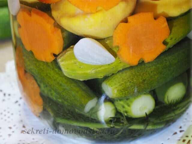 Салат из огурцов с кетчупом на зиму: рецепты с овощами, чесноком и зеленью, ассорти. Технология с дополнительной обработкой и без нее. Условия хранения.