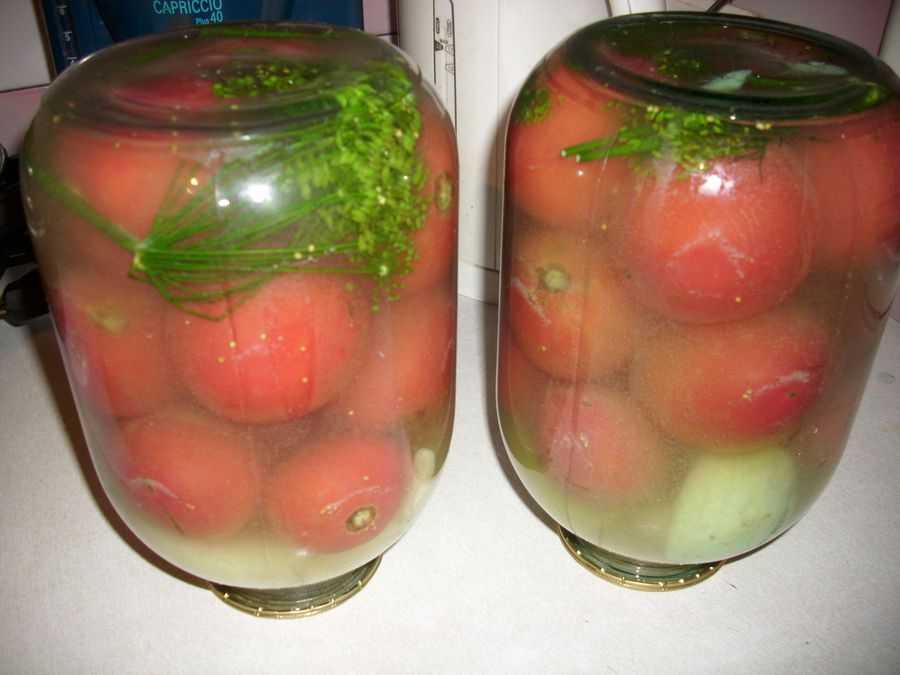 Секреты бабушкиных рецептов засолки зеленых помидоров