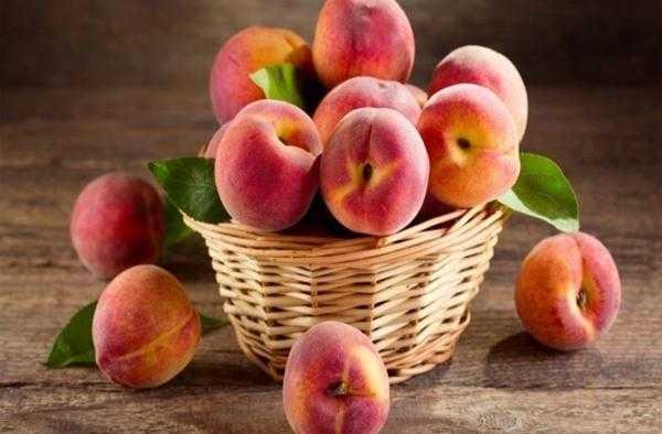 Персики в собственном соку: сладкие консервы на зиму без стерилизации или без сахара