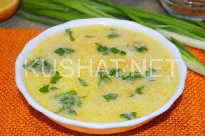Суп из вешенок с картошкой – легко и питательно: рецепт с фото и видео