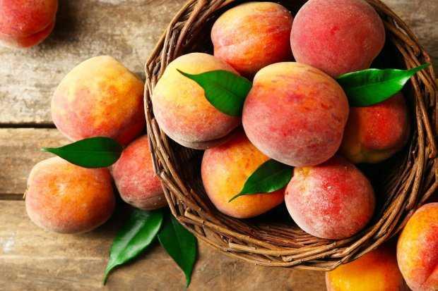 Персики на зиму: 17 лучших рецептов приготовления заготовок в домашних условиях