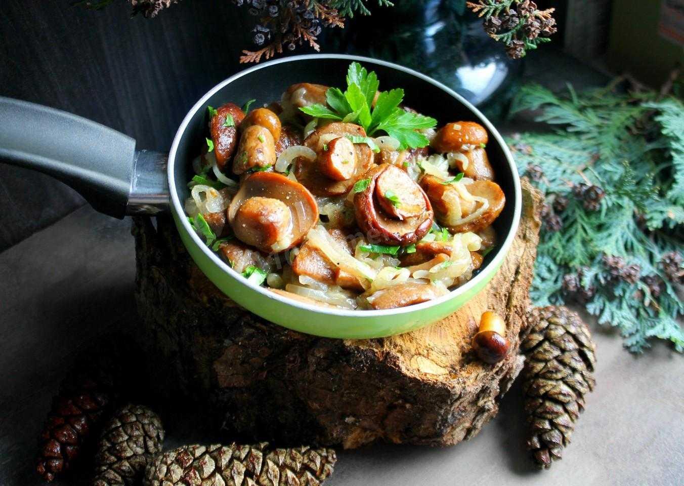 Жареные грибы маслята: лучшие рецепты с луком, картошкой, сметаной, сыром, без варки, на зиму. на каком масле жарить маслята? как и сколько варить грибы маслята перед жаркой по времени?