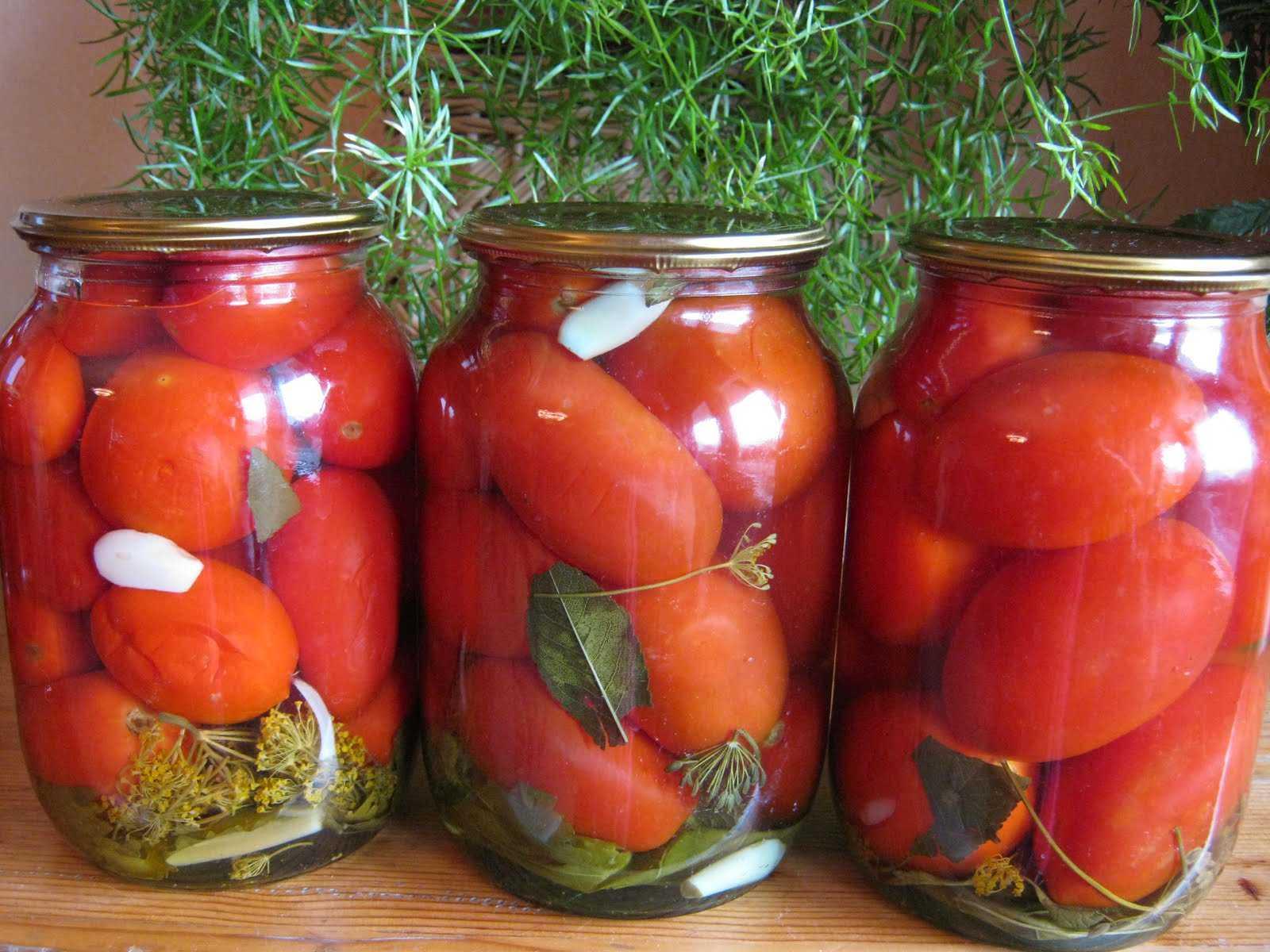Как засолить помидоры холодным способом в банках: рецепты с видео