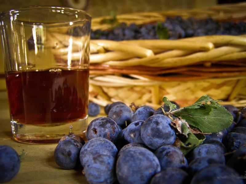 Домашнее вино из сливы простое рецепт с фото - 1000.menu