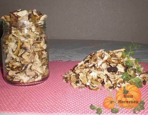 Как сушить грибы: на нитке, в духовке, в микроволновке и в электросушилке