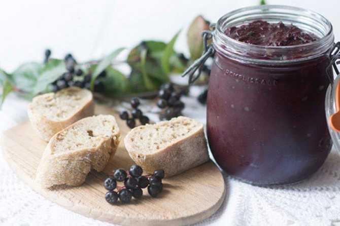 Изюм и цукаты из черноплодки в домашних условиях: рецепты
