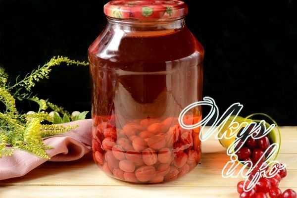 Компот из кизила: лучшая подборка рецептов – как варить кизиловый компот на зиму и на каждый день в кастрюле » сусеки