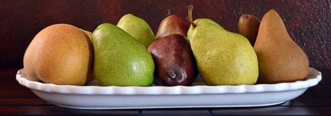 Можно ли заморозить топинамбур на зиму: как сберечь земляную грушу в домашних условиях в холодильнике, существует ли иные способы хранения, как есть оттаявший овощ?