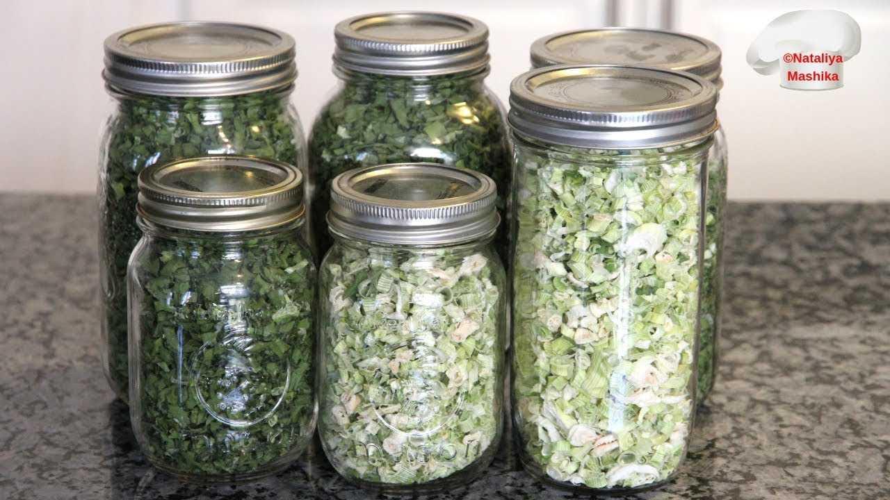 Как сушить шиповник в домашних условиях, заготовка и способы приготовления