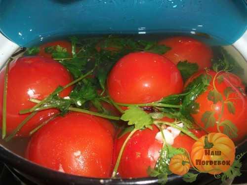 Малосольные огурцы и помидоры на зиму: простые пошаговые рецепты с фото
