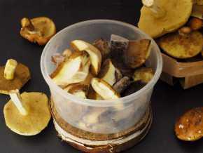 Заморозка грибов различными способами на зиму в домашних условиях