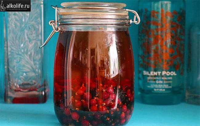 Вишня на коньяке: рецепты в домашних условиях своими руками из свежих, замороженных, вяленых ягод