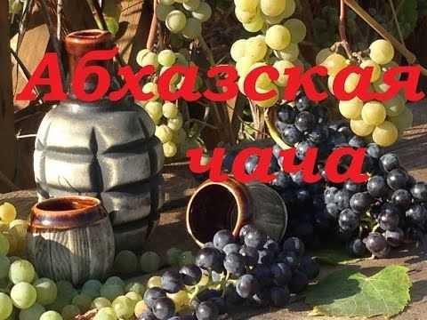 Домашние рецепты приготовления чачи из винограда