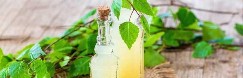 Вино из березового сока. рецепты, по которым можно приготовить березовое вино в домашних условиях.