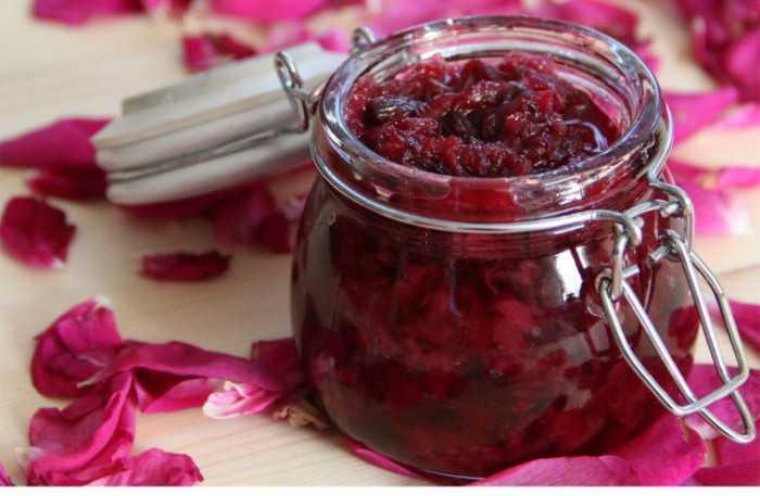 Свойства плодов и ягод шиповника при беременности