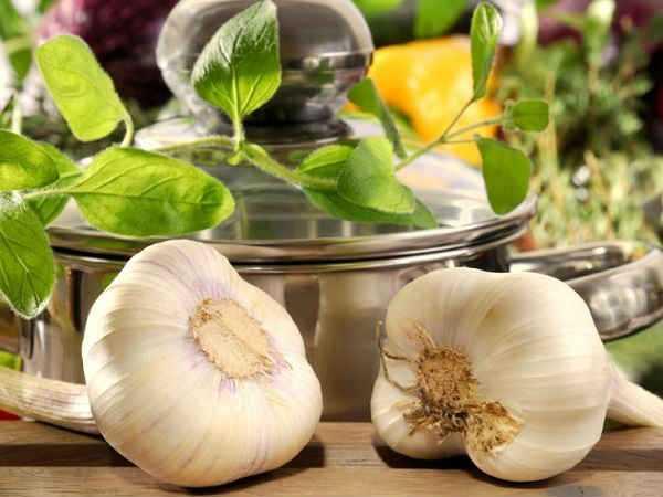 Маринованные белые грибы на зиму — 6 простых рецептов в банках