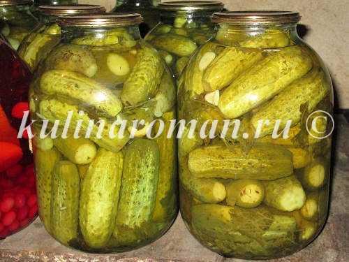 Огурцы, маринованные с лимонной кислотой: рецепты хрустящих закусок на зиму в банках, советы по приготовлению