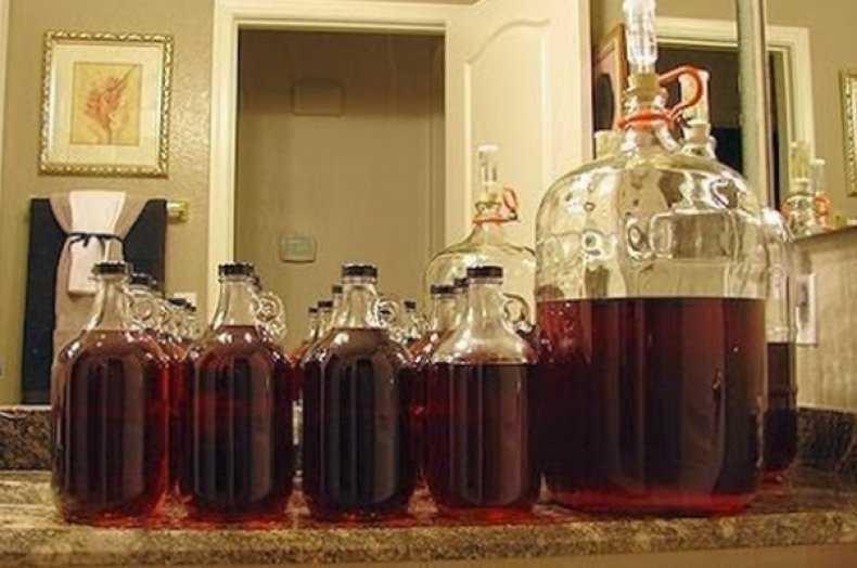 Вино из сливы: как сделать в домашних условиях, 13 простых пошаговых рецептов