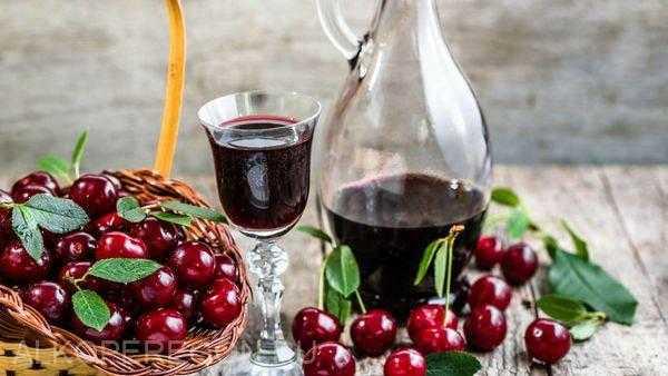 Вино из вишни в домашних условиях по белой и красной схеме